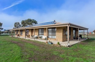 Picture of 101 Hopetoun Road, Mitchell Park VIC 3355
