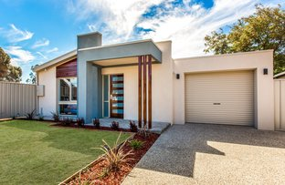 Picture of 11 Todd Place, West Lakes Shore SA 5020