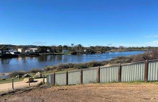 Picture of Lot 28 Wetlands Close, Murray Bridge SA 5253