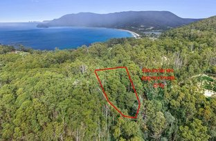 Picture of Lot 17 311 Pirates Bay Drive, Eaglehawk Neck TAS 7179