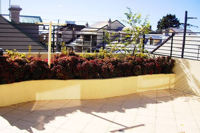 Picture of 1/1 Prosper Lane, ROZELLE NSW 2039