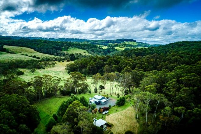 Picture of 6410 Waterfall Way, DORRIGO NSW 2453