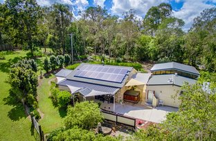 Picture of 3 Grecian Bends Road, Greens Creek QLD 4570