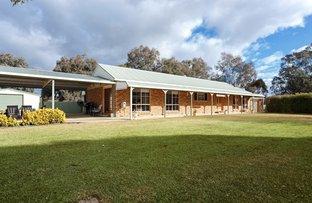 Picture of 137 Main Sreet, Lake Albert NSW 2650