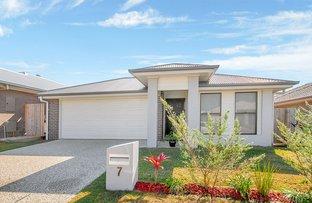 Picture of 7 Silky Oak Street, Ripley QLD 4306