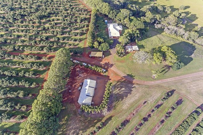 Picture of 236 BUTCHERS ROAD, SOUTH ISIS QLD 4660