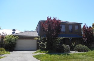 Picture of 10 Sheffield Court, Cairnlea VIC 3023