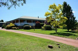 Picture of 10 Korra Street, Marrangaroo NSW 2790