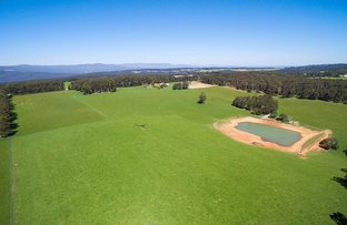 Lot 2/287 Extons Road, Kinglake Central VIC 3757