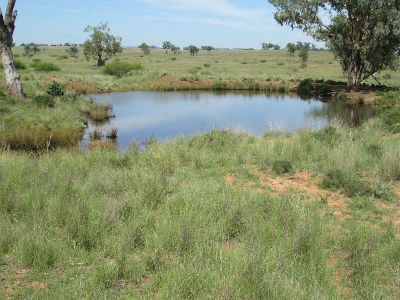 """Esmadale"", Warialda NSW 2402, Image 2"