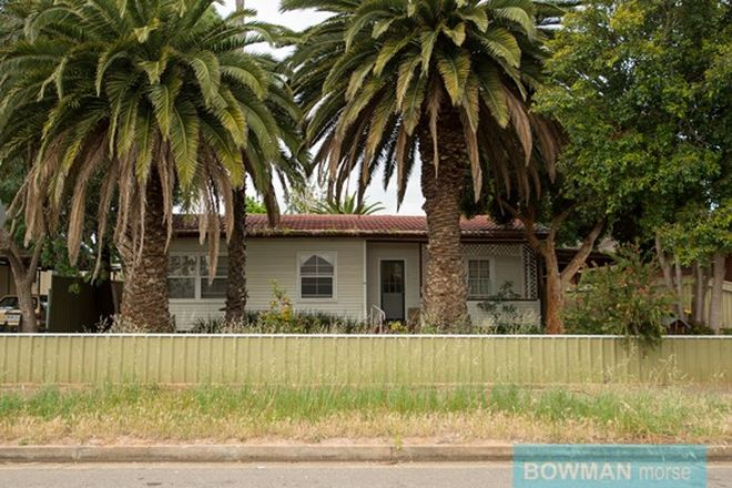 Picture of 24 Scott Avenue, CLOVELLY PARK SA 5042