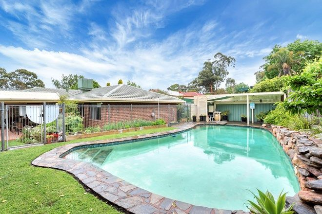Picture of 20 Antilla Way, FLAGSTAFF HILL SA 5159