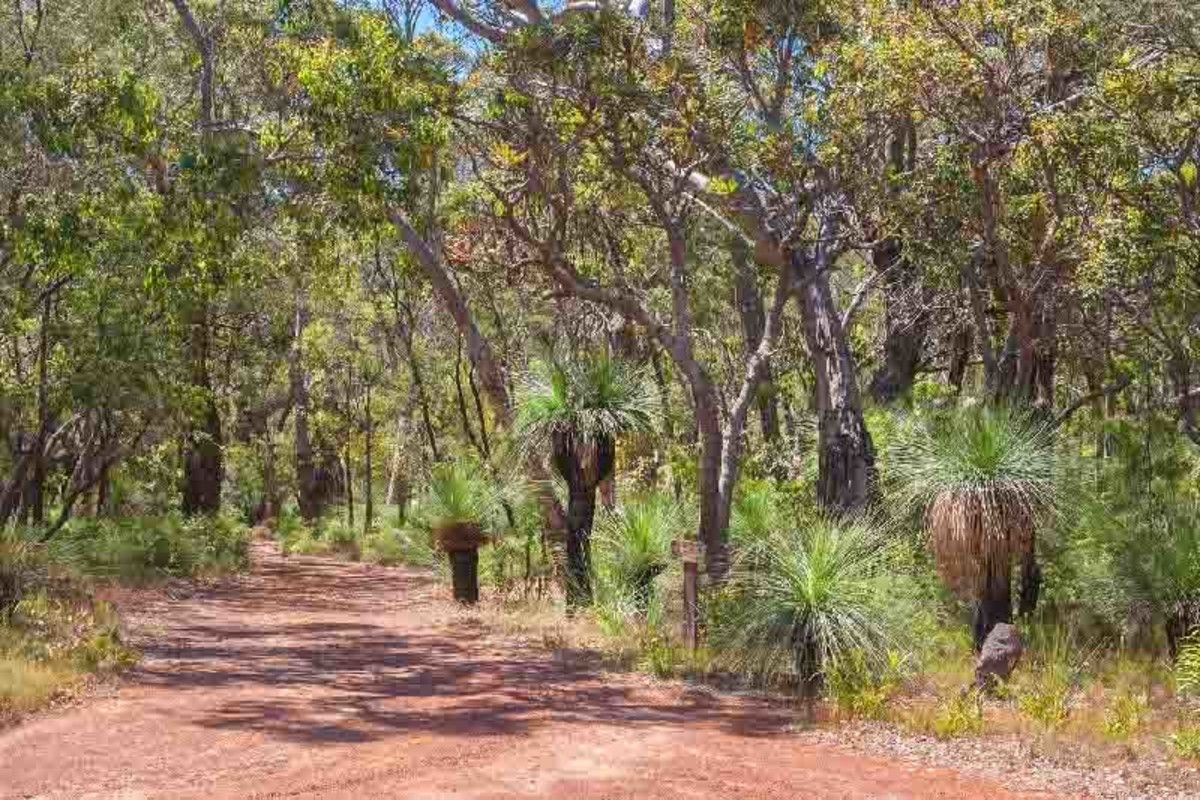 200 Wilderness Road, Margaret River WA 6285, Image 1