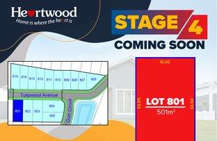 Picture of Lot/801 Tulipwood Avenue, Edgeworth NSW 2285