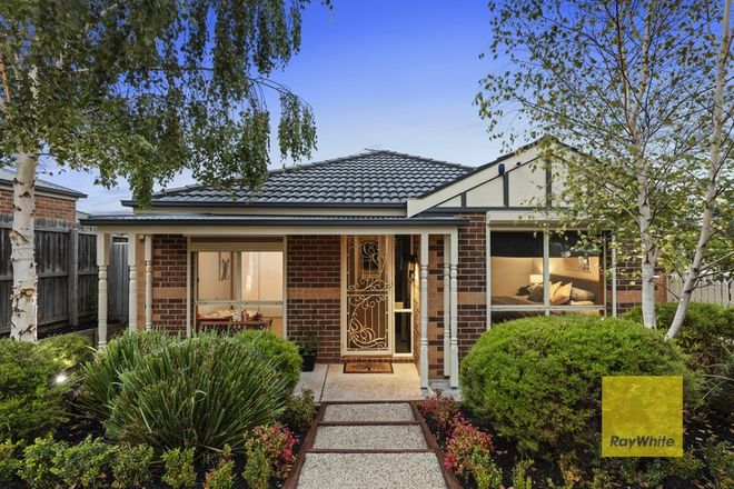 Picture of 19 Loris Close, GROVEDALE VIC 3216