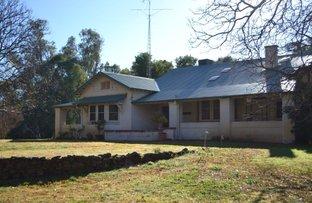 "Picture of Farm ""Cuddle"" ""Cuddle"", Euroley NSW 2700"