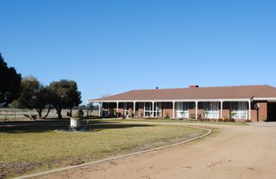 Picture of 66 Cookardinia, Henty NSW 2658