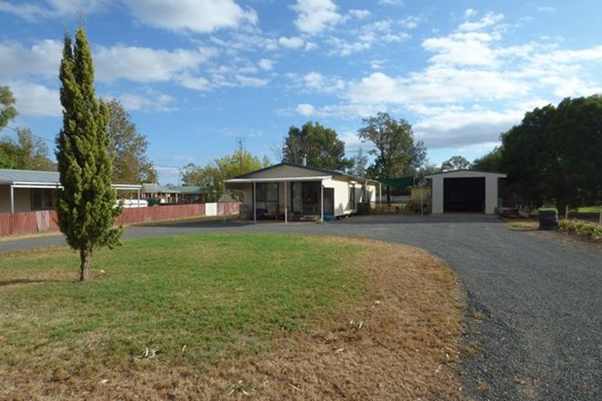 Picture of 23 Evelyn Street, EUGOWRA NSW 2806