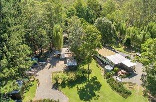 2713 Nerang Murwillumbah Road, Numinbah Valley QLD 4211