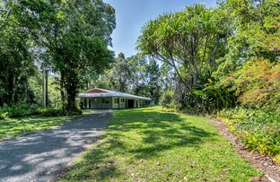 Picture of 57C Masons Road, Kuranda QLD 4881