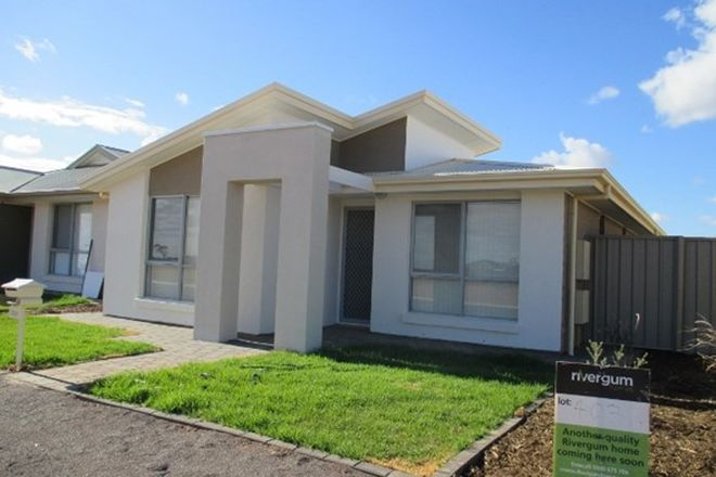 Picture of 234 Cartledge Avenue, WHYALLA JENKINS SA 5609