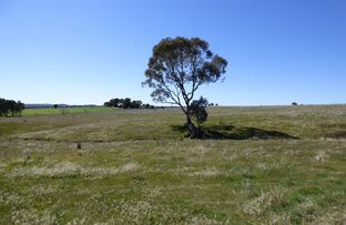 Picture of Lot 5 Wickham Lane, Young NSW 2594