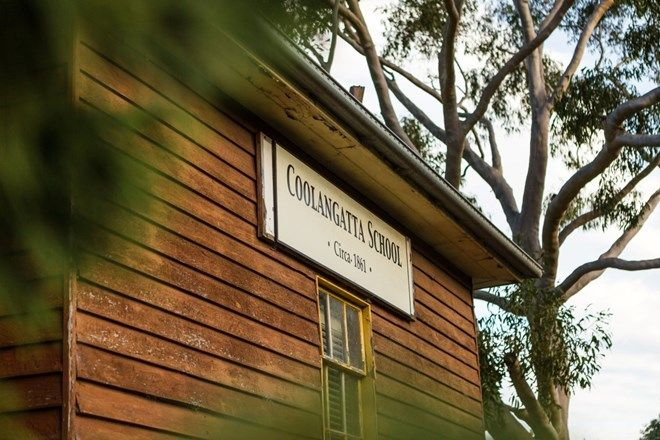 Picture of 1180 BOLONG ROAD, COOLANGATTA NSW 2535