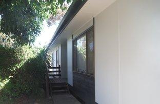 Picture of 19 Mary Street, Kapunda SA 5373