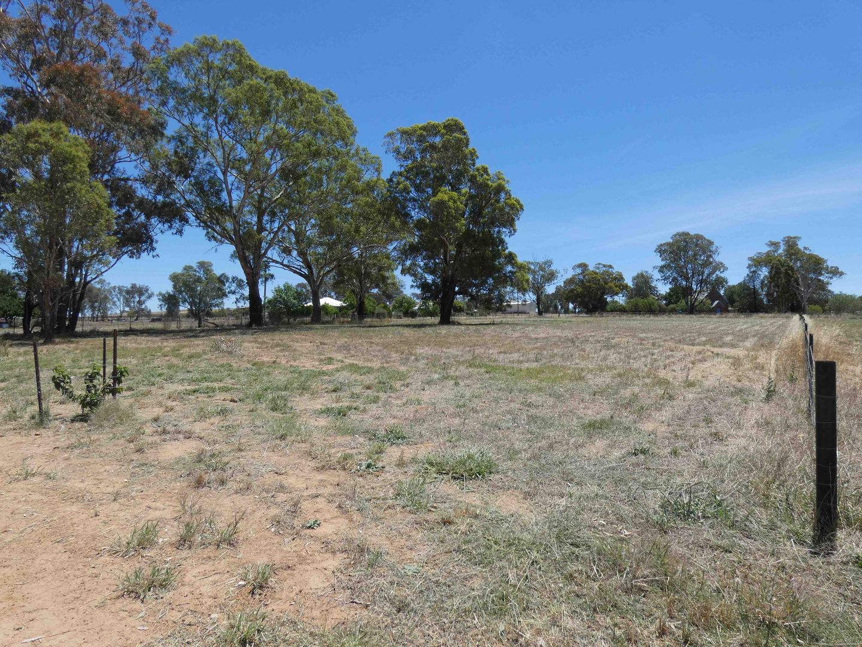 BendickMurrell Road, Bendick Murrell NSW 2803, Image 1