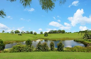 Picture of 7 Lawrence Place, Maleny QLD 4552
