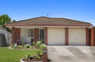 Picture of 16 Honeymyrtle Ct, Mountain Creek QLD 4557