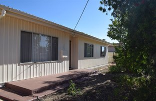 Picture of 17 Armstrong Street, Dongara WA 6525