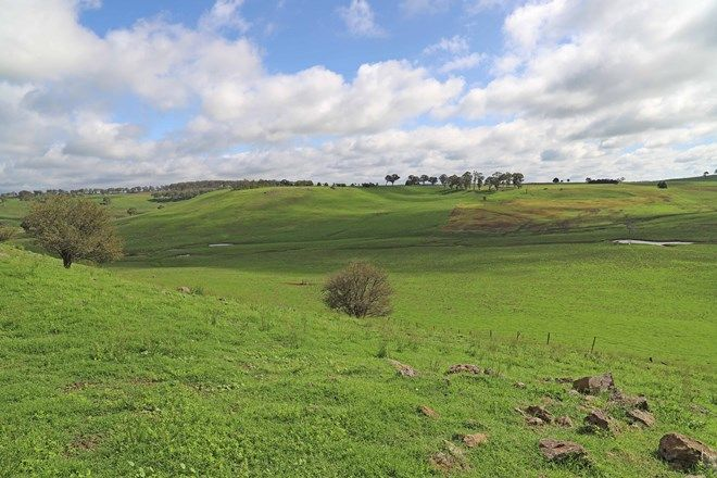 Picture of 1889 Greenhills Road, GUYRA NSW 2365