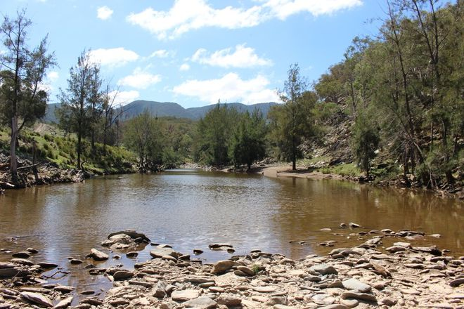 Picture of SALLYS FLAT NSW 2850