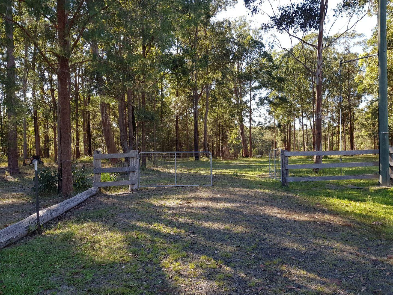 56 Richards Place, Verges Creek NSW 2440, Image 1