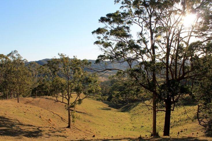 40 Wyndham Road - Wyneden via Kyogle, Kyogle NSW 2474, Image 1