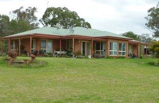 939 PUKAWIDGI ROAD, Bukkulla NSW 2360