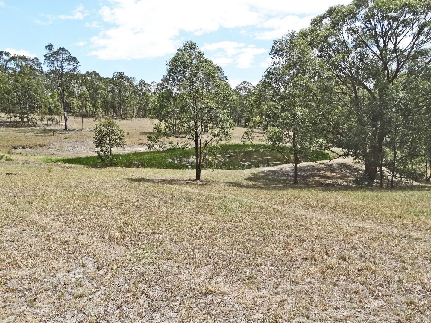 486 Warraba Road, The Branch NSW 2425, Image 1
