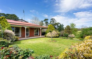 Picture of 13 Stewart Street, Castlemaine VIC 3450