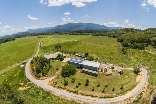 Picture of 479 Miallo Bamboo Creek Road, BAMBOO QLD 4873