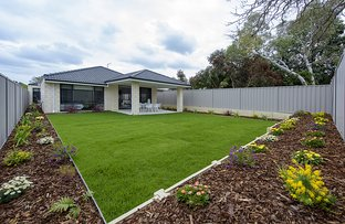 Picture of 2/2A Hertford Street, East Victoria Park WA 6101