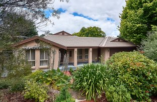 15 Wilkinson Court, Mount Barker SA 5251