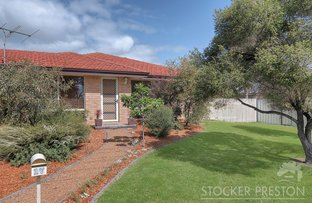 Picture of 17 Spurr Street, Capel WA 6271