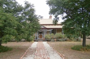 Picture of 14-16 River Street, Quambatook VIC 3540