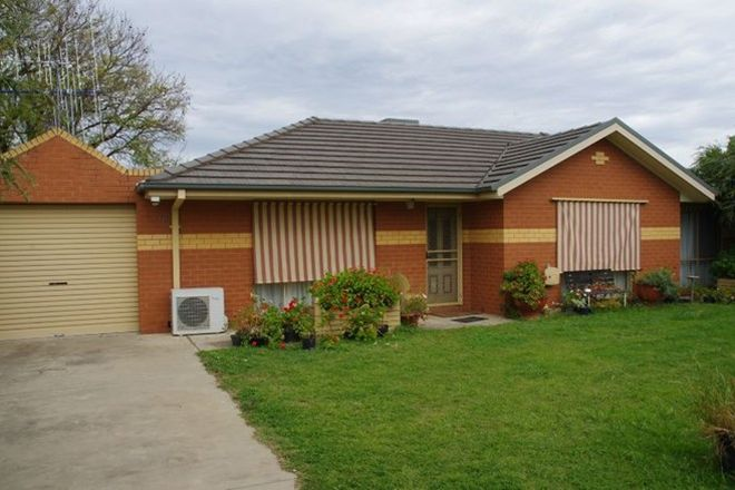 Picture of 2/5 Apricot Circuit, COBRAM VIC 3644