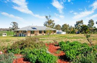Picture of 445 Spains Lane, Quirindi NSW 2343