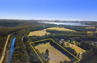 Picture of 14 Mannings Lookout Road, Fitzroy Falls NSW 2577