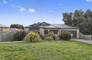 Picture of 20 Heales Street, Mount Pleasant VIC 3350