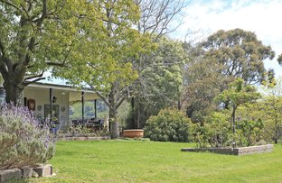 Picture of 109 Stranges Road, Romsey VIC 3434