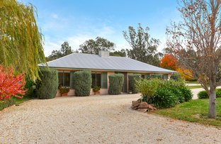 Picture of 205 Selectors Road, Mangalore VIC 3663